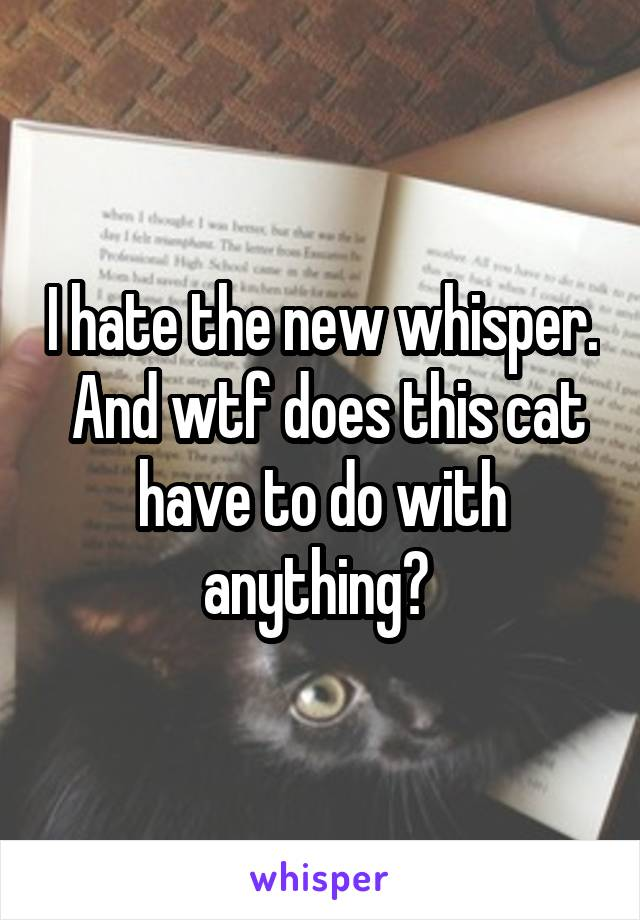 I hate the new whisper.  And wtf does this cat have to do with anything?