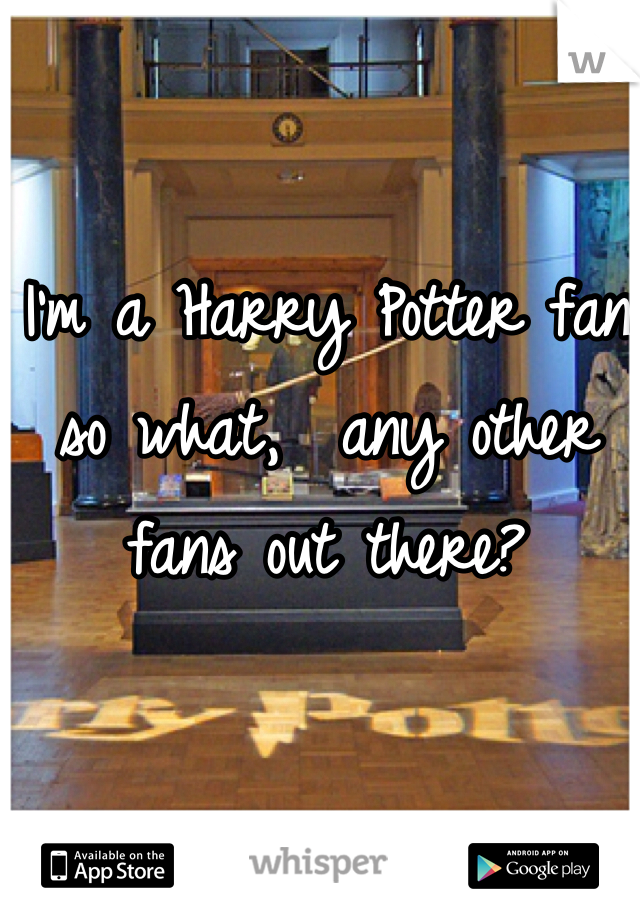 I'm a Harry Potter fan so what,  any other fans out there?
