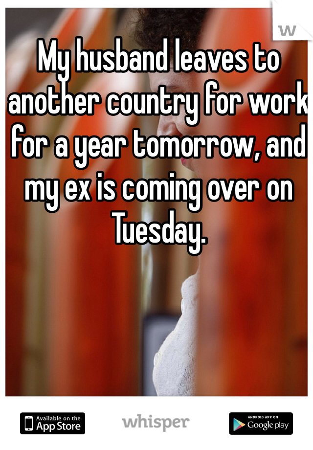 My husband leaves to another country for work for a year tomorrow, and my ex is coming over on Tuesday.