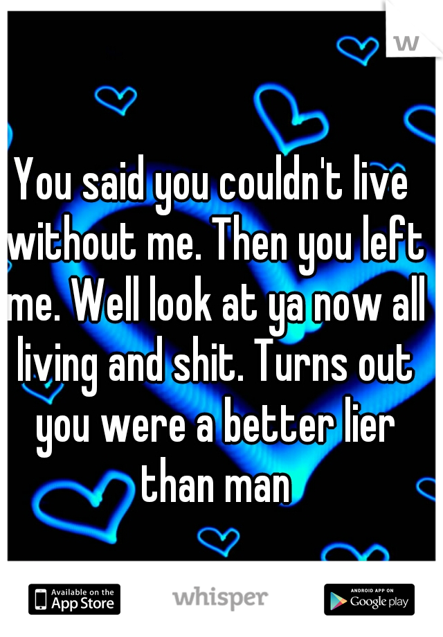 You said you couldn't live without me. Then you left me. Well look at ya now all living and shit. Turns out you were a better lier than man