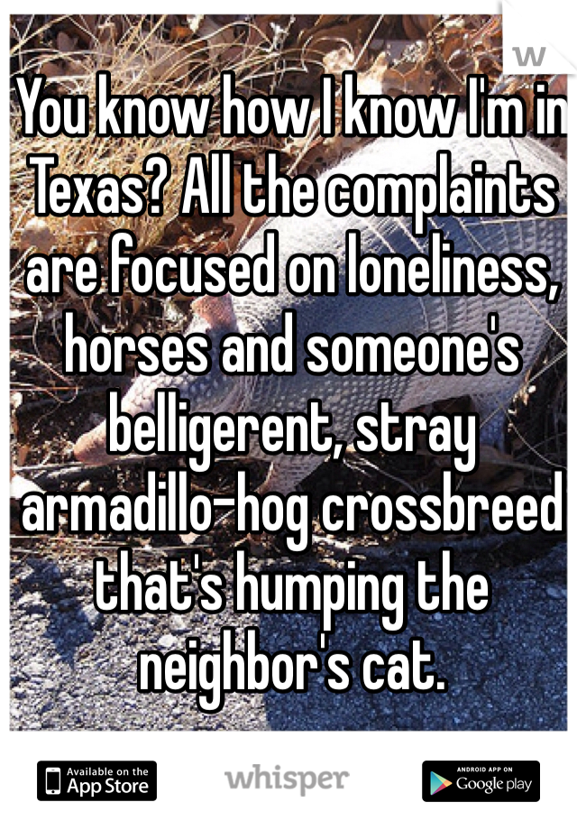 You know how I know I'm in Texas? All the complaints are focused on loneliness, horses and someone's belligerent, stray armadillo-hog crossbreed that's humping the neighbor's cat.