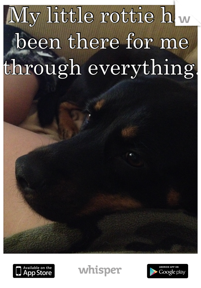 My little rottie has been there for me through everything.