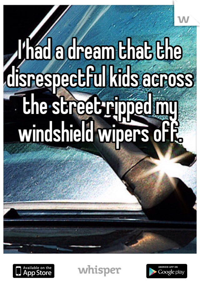 I had a dream that the disrespectful kids across the street ripped my windshield wipers off.