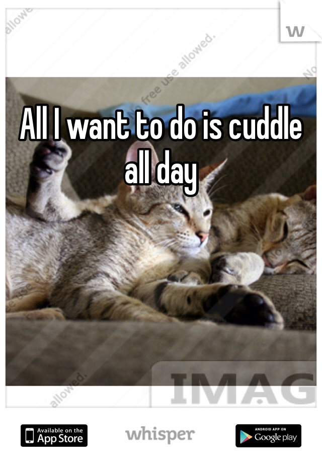 All I want to do is cuddle all day
