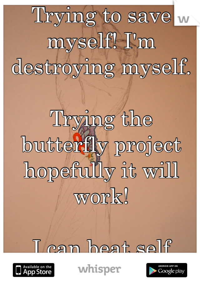 Trying to save myself! I'm destroying myself.  Trying the butterfly project hopefully it will work!   I can beat self harm!!