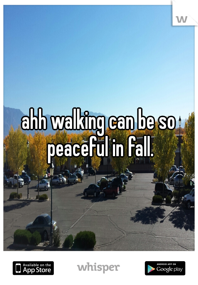 ahh walking can be so peaceful in fall.