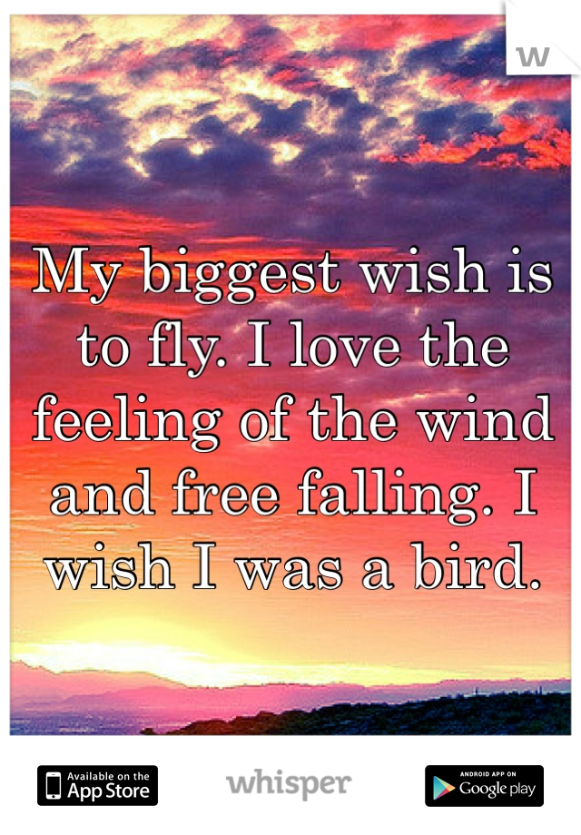 My biggest wish is to fly. I love the feeling of the wind and free falling. I wish I was a bird.