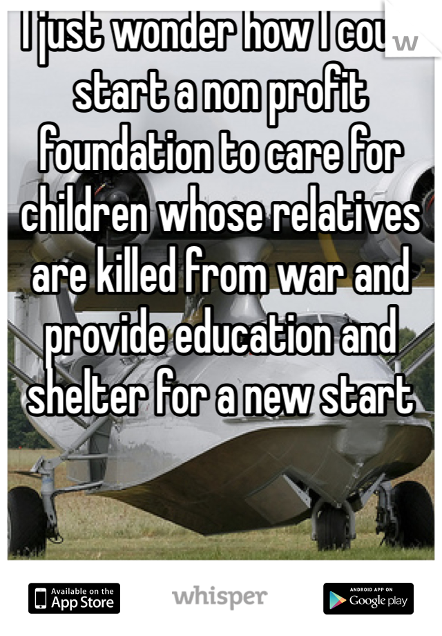 I just wonder how I could start a non profit foundation to care for children whose relatives are killed from war and provide education and shelter for a new start
