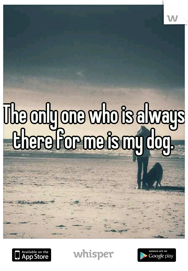 The only one who is always there for me is my dog.