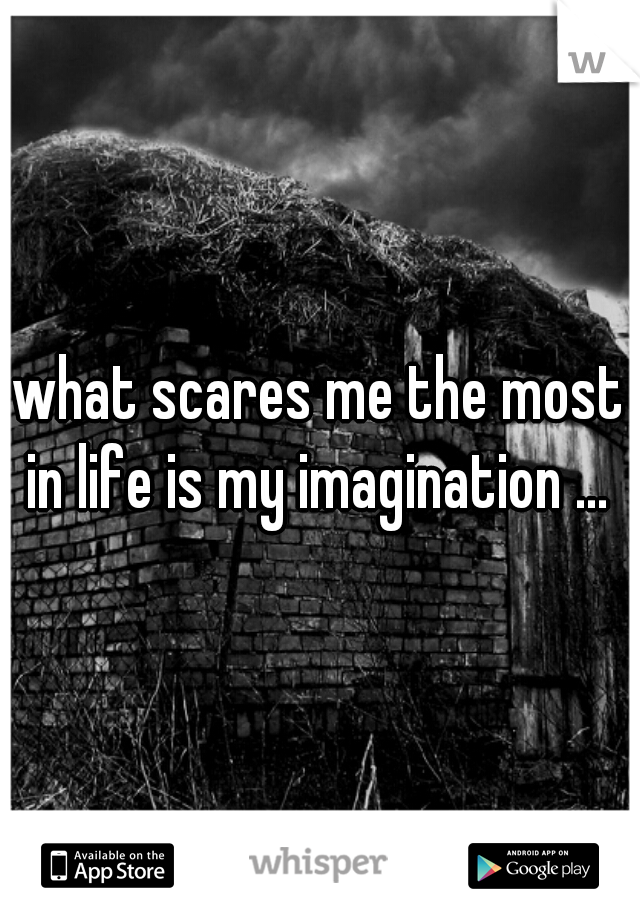 what scares me the most in life is my imagination ...