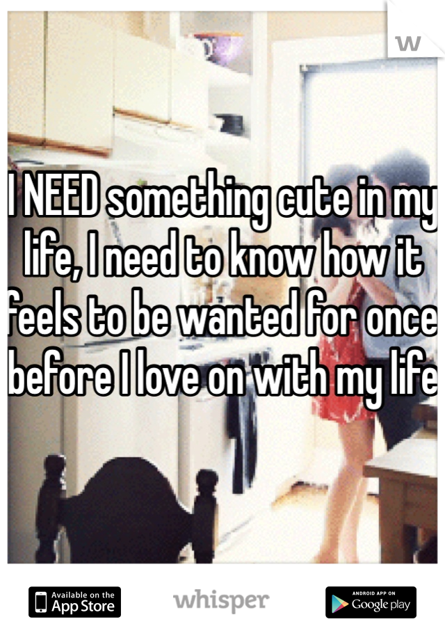 I NEED something cute in my life, I need to know how it feels to be wanted for once before I love on with my life