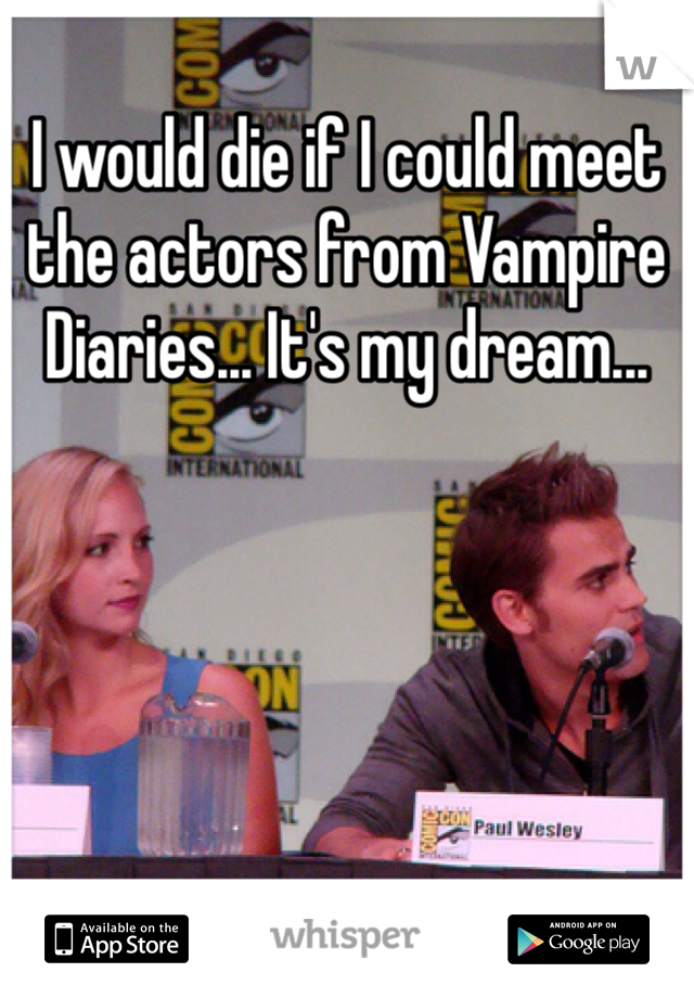 I would die if I could meet the actors from Vampire Diaries... It's my dream...