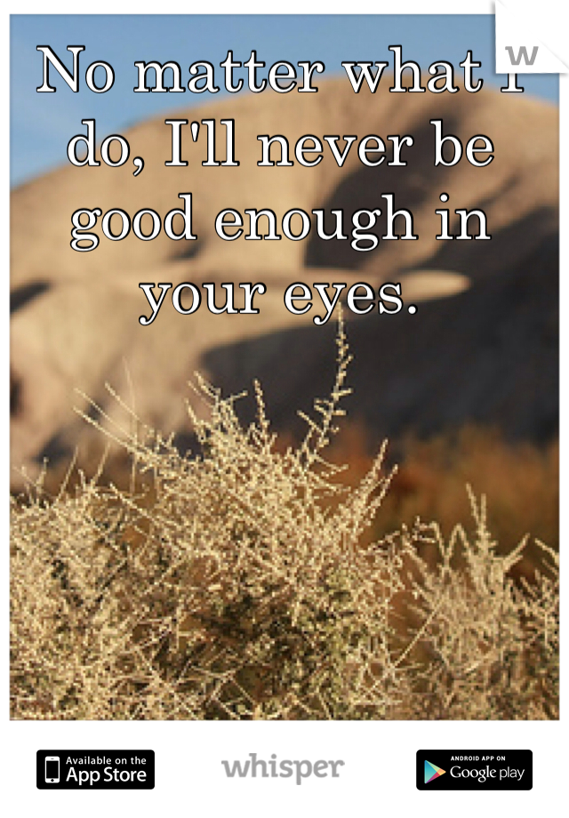 No matter what I do, I'll never be good enough in your eyes.