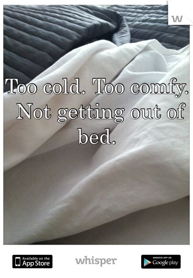 Too cold. Too comfy.  Not getting out of bed.
