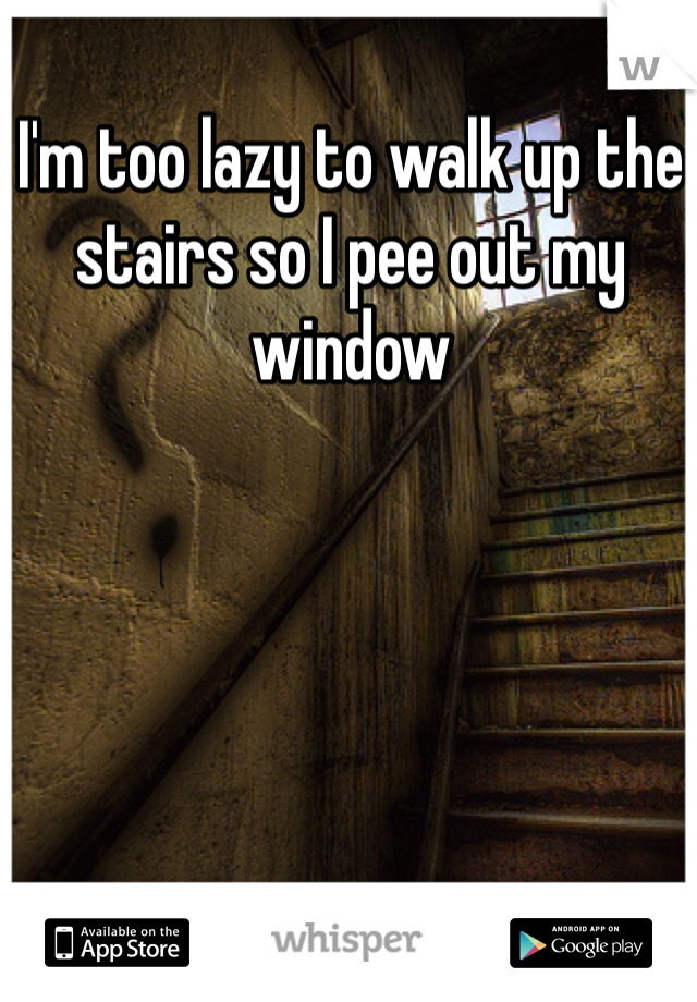 I'm too lazy to walk up the stairs so I pee out my window