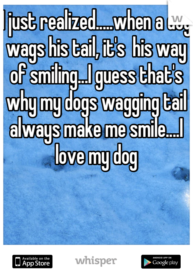 I just realized.....when a dog wags his tail, it's  his way of smiling...I guess that's why my dogs wagging tail always make me smile....I love my dog