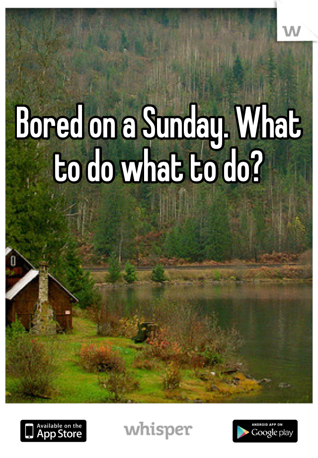 Bored on a Sunday. What to do what to do?