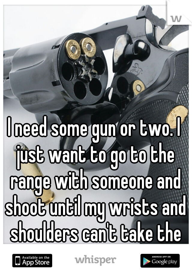 I need some gun or two. I just want to go to the range with someone and shoot until my wrists and shoulders can't take the recoil anymore.