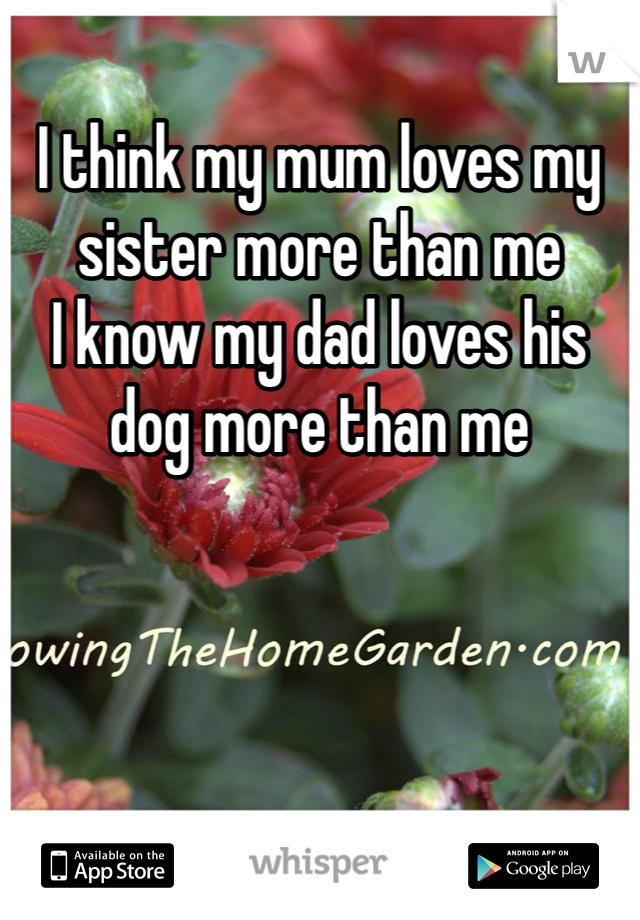 I think my mum loves my sister more than me  I know my dad loves his dog more than me