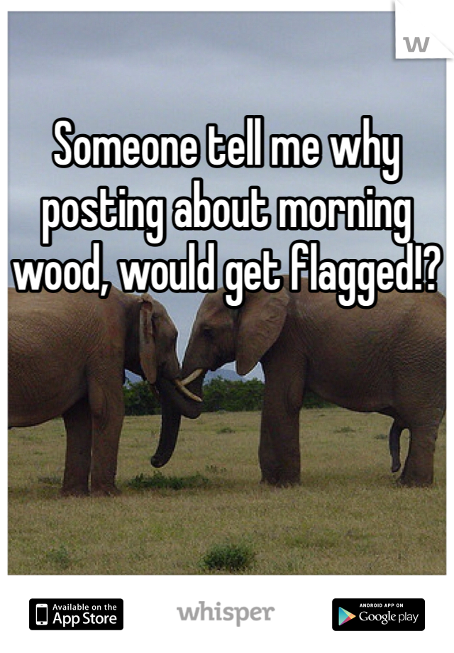 Someone tell me why posting about morning wood, would get flagged!?