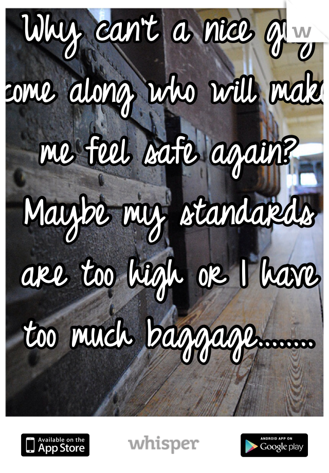 Why can't a nice guy come along who will make me feel safe again? Maybe my standards are too high or I have too much baggage........