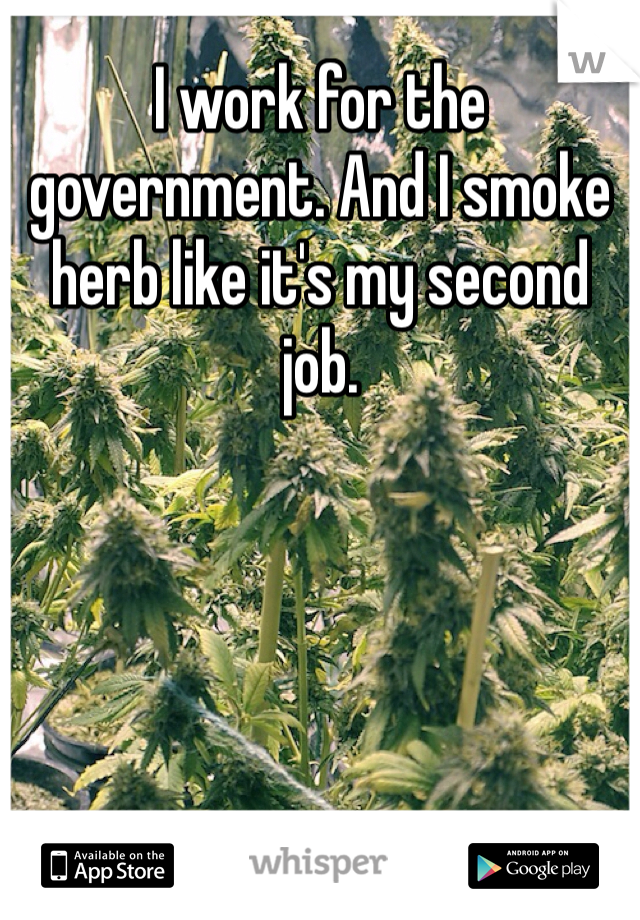 I work for the government. And I smoke herb like it's my second job.