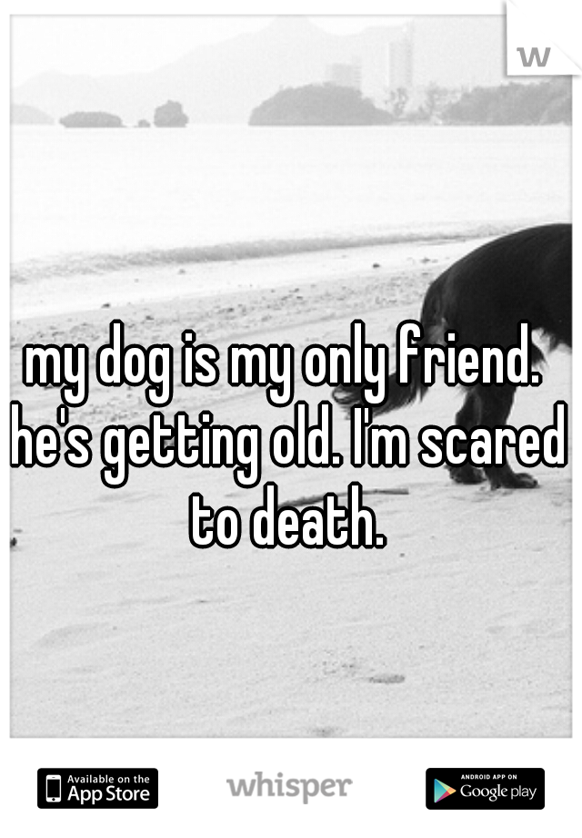 my dog is my only friend. he's getting old. I'm scared to death.