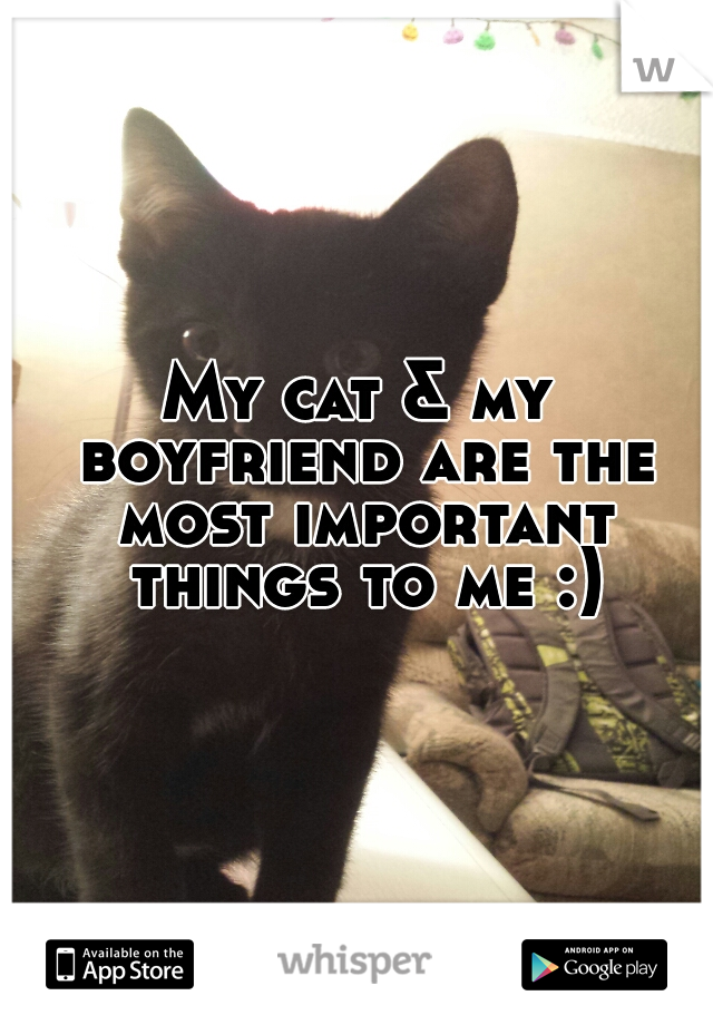 My cat & my boyfriend are the most important things to me :)