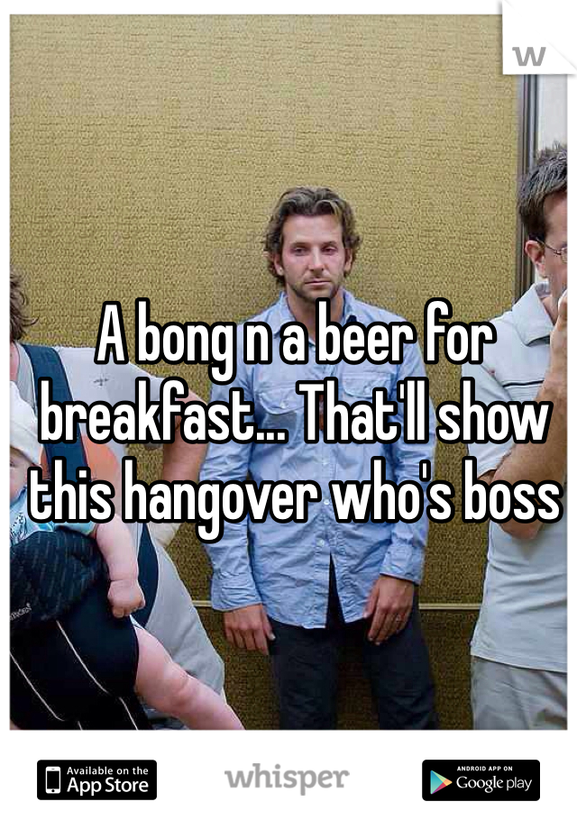 A bong n a beer for breakfast... That'll show this hangover who's boss