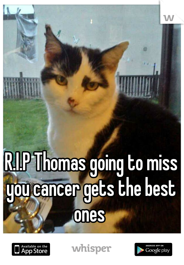 R.I.P Thomas going to miss you cancer gets the best ones