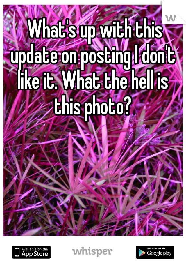 What's up with this update on posting I don't like it. What the hell is this photo?
