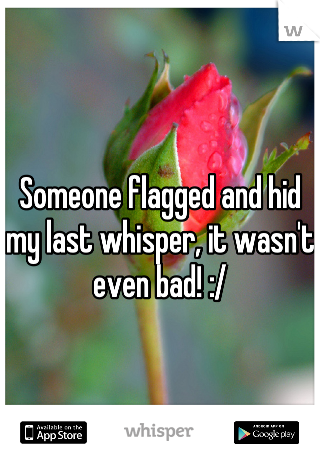 Someone flagged and hid my last whisper, it wasn't even bad! :/