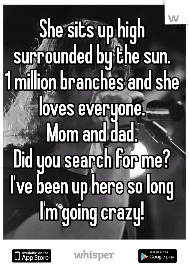She sits up high surrounded by the sun.  1 million branches and she loves everyone.  Mom and dad.  Did you search for me?  I've been up here so long I'm going crazy!
