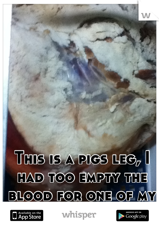 This is a pigs leg, I had too empty the blood for one of my classes .