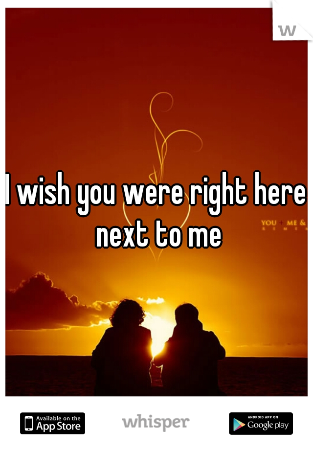I wish you were right here next to me