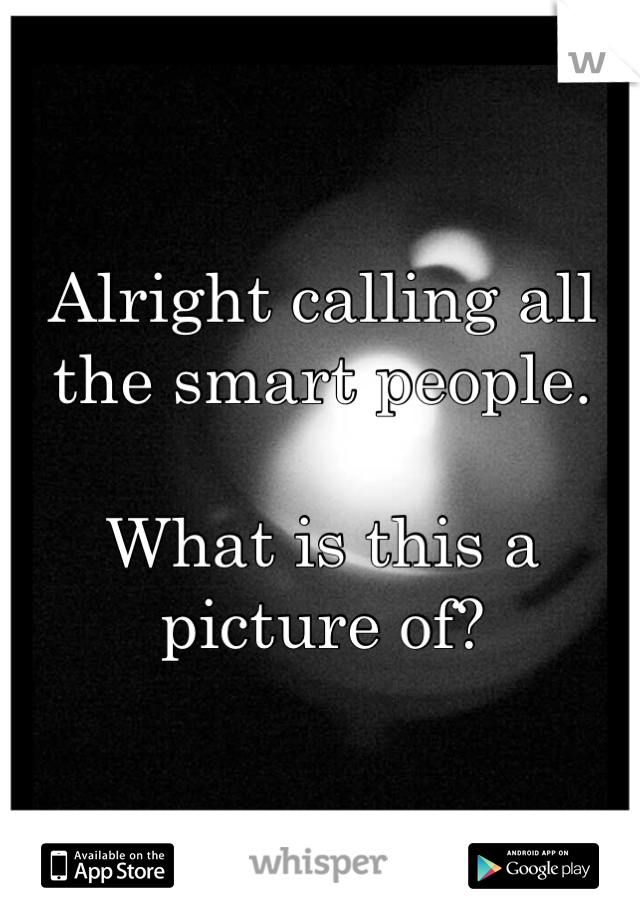 Alright calling all the smart people.  What is this a picture of?