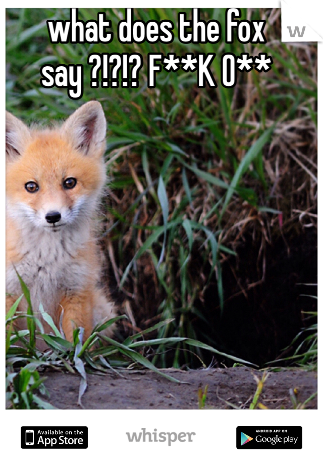 what does the fox say ?!?!? F**K O**