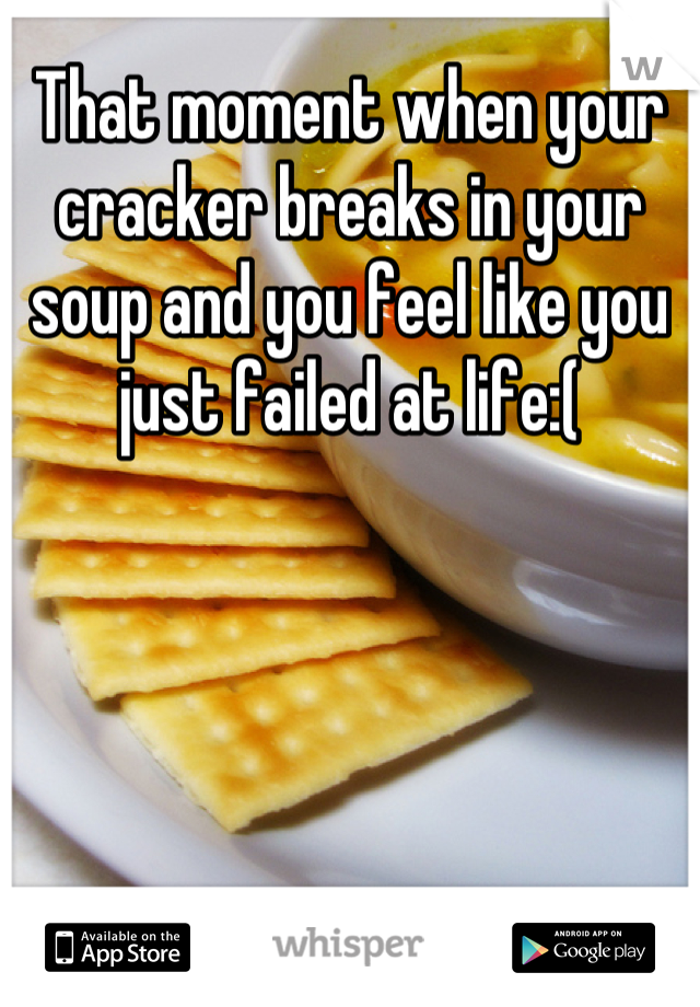 That moment when your cracker breaks in your soup and you feel like you just failed at life:(