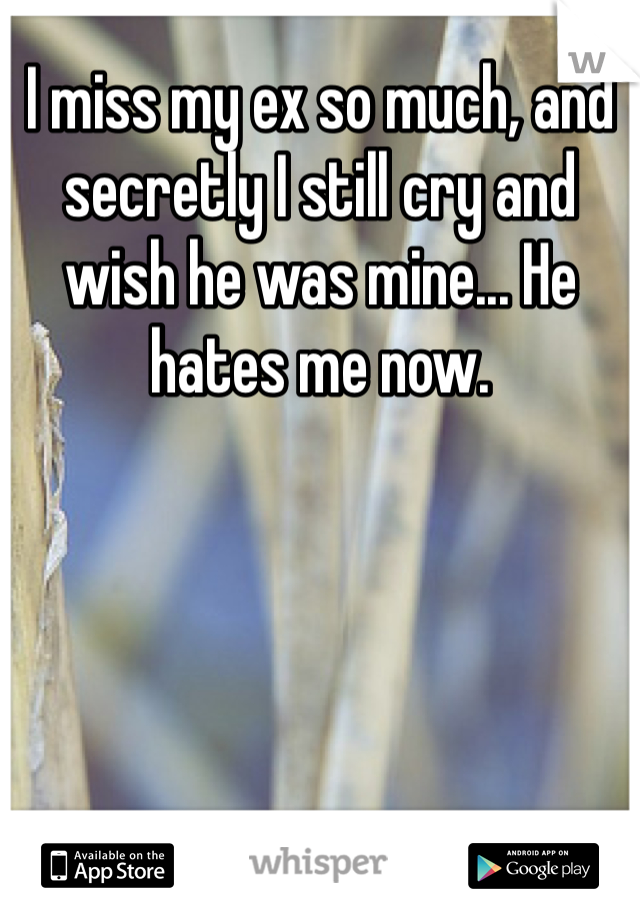 I miss my ex so much, and secretly I still cry and wish he was mine... He hates me now.