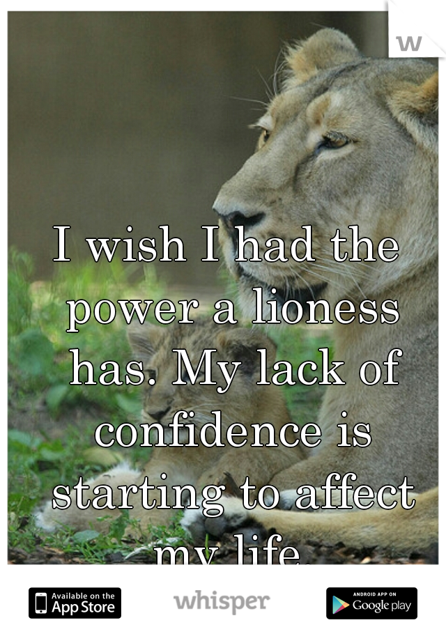 I wish I had the power a lioness has. My lack of confidence is starting to affect my life.