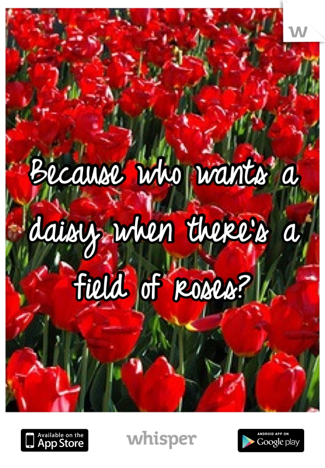 Because who wants a daisy when there's a field of roses?