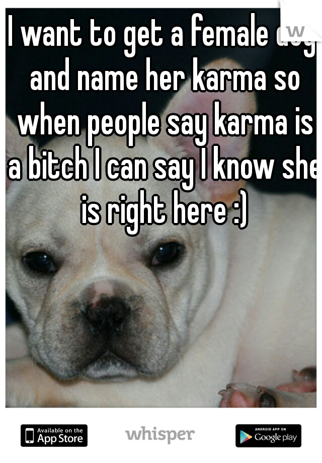 I want to get a female dog and name her karma so when people say karma is a bitch I can say I know she is right here :)