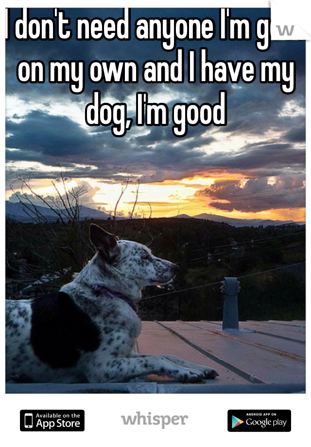 I don't need anyone I'm good on my own and I have my dog, I'm good
