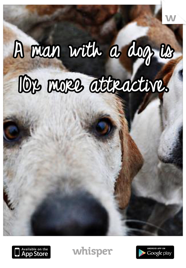 A man with a dog is 10x more attractive.