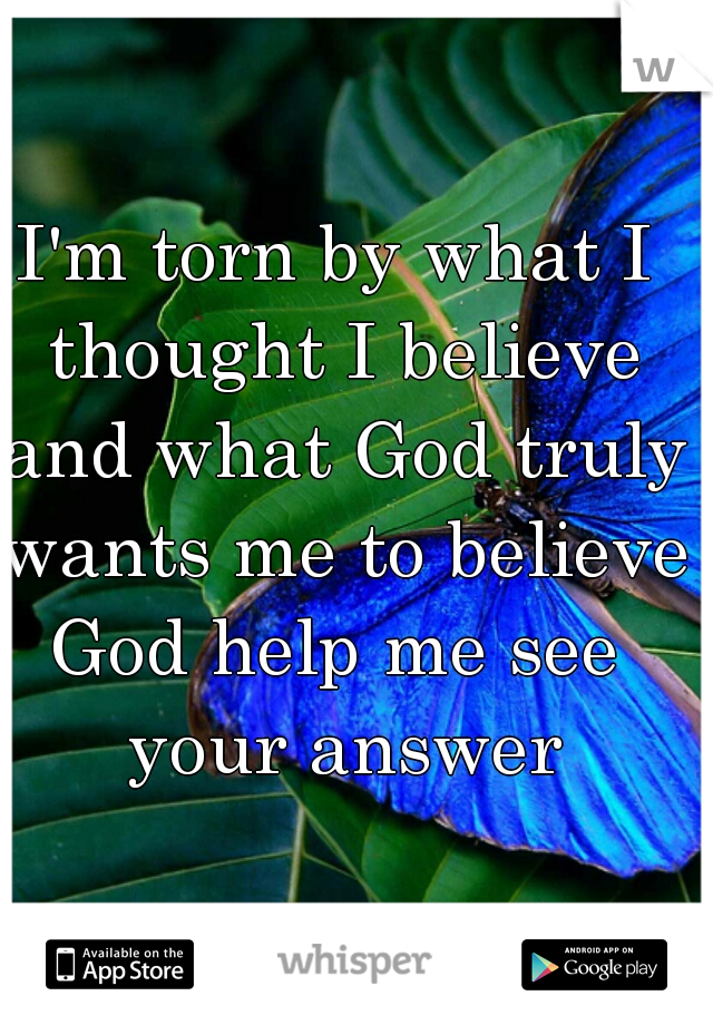I'm torn by what I thought I believe and what God truly wants me to believe   God help me see your answer