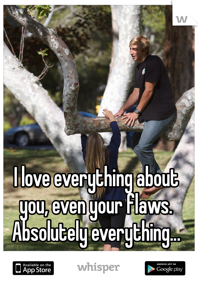I love everything about you, even your flaws. Absolutely everything...