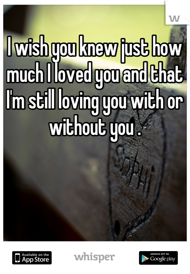 I wish you knew just how much I loved you and that I'm still loving you with or without you .