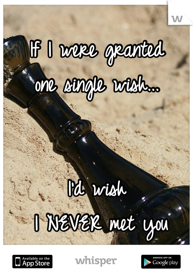 If I were granted  one single wish...   I'd wish  I NEVER met you