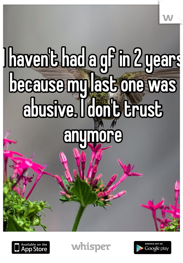 I haven't had a gf in 2 years because my last one was abusive. I don't trust anymore