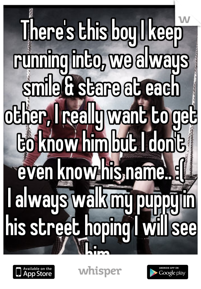 There's this boy I keep running into, we always smile & stare at each other, I really want to get to know him but I don't even know his name.. :( I always walk my puppy in his street hoping I will see him.